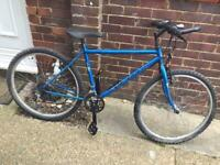 Small Adults 21 Speed Mountain Bike