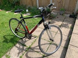 Bike - adult - 21 speed, 21 inch frame