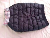 Thick padded waterproof dog jacket pet's at home size large