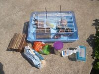 Small Animal Cage gerbil, hamster etc, with lots of accessories