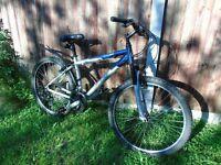 Giant Rock Mountain bike (Aluminium frame)