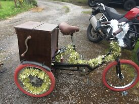 Small adult tricycle