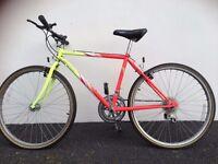 Emmelle Leopard Bike
