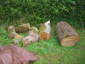 Loads a wood Victoria!!