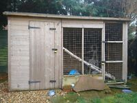 Great dog kennel 6foot by 8 foot,