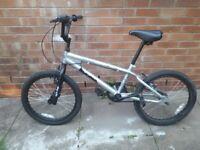 BMX Terrain Anaconda Bike for Boys