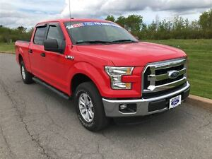 2015 Ford F-150 XLT ONE OWNER WE SOLD AND SERVICED 