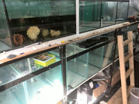 Fish House Setup Closing Down Sale everything MUST GO
