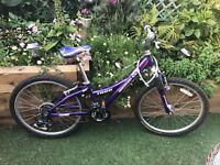 Teenage / Kids Girls Mountain Bike