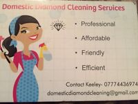 Domestic Diamond cleaning services.