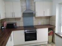 Very big and spacious double room to let for 3 months in a refurbished house in Enfield for 1 person