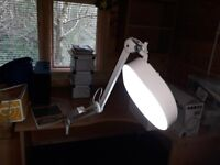 2 Table Clamp Illuminated 1x5 Magnifiers