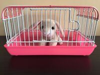 Smallest and Cutest Toy Pet Cage in the World, Perfect as an Easter Present. Real Metal Cages