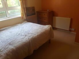 £600 Double bed couples welcome Available ASAP