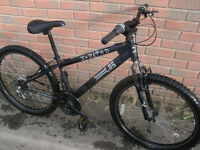X Rated XC05 Jump Bike