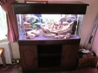 "3ft Aquarium [L36"" x H18"" x D12""] + Cabinet Stand [L100 x H118 x D36]"