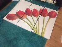 Large canvas tulip picture