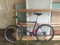 Specialized Hard Rock 90s Retro Project Bike