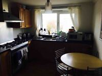 Single room available in 2 bedroom flat (Ideally from 15 December)