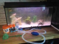 Juwel fish tank 80l + full set up