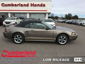 2002 Ford Mustang Base  - Low Mileage