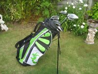 WOODWORM GOLF CLUBS IN BAG WITH STAND MENS RIGHT HAND