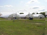 Greenhouses 192' x30' - Freestanding -  Commercial Horticulture