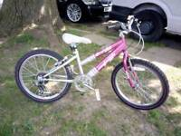 "Raleigh 20"" wheel girls bike."