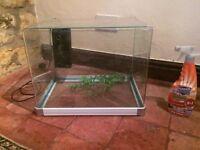 Fish tank and filter pump