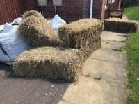 Hey bales- free to collector