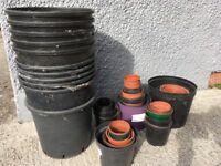 Free plastic plant pots- about 60 various