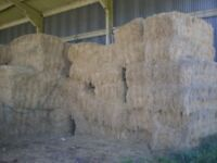 Large hay bales for sale