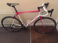Halcyon, road bike, racing bike (not trek, specialized, giant, carrera)