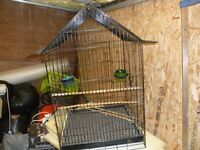 Large bird cage suitable for small parrot. 20 inches square 32 inches tall.
