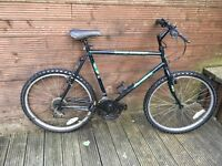 ADULT GREEN SHADOW MOUNTAIN BIKE WITH 21 INCH FRAME
