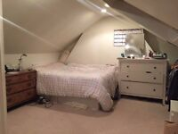 Big double sunny room for short term let from 4 March