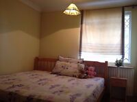 Large Double Bedroom in a Lovely Home in Great Area for Single