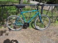 """Mountain Bike For Sale. 19"""" Frame. Fully Serviced, Ready To Ride & Guaranteed. 18 Speed"""