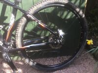 Battaccheli Mountain bike 29 er for sale Great spec two years old little use great spec rolls well