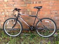 Sabre Havoc Extra Large Mountain bike in Excellent condition!!!