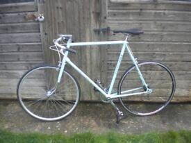 Vintage Retro Racer Racing Bike Single Speed Eroica Steel 1970's Barry Hoban Large Frame Fixie ?