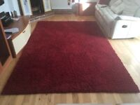 Living room carpet in excellent condition