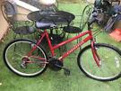 Diamondback adult bike