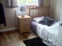 Single room £70 per weekLisburn city centre
