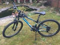 Boys Giant Revel mountain bike
