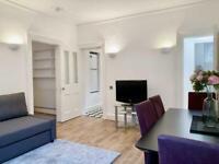 2 bedroom flat in York Mansions, Chiltern Street W1