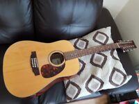 Legacy dreadnaught 12-string guitar