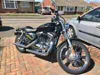 Harley Davidson XL1200 C Custom Sport (black)