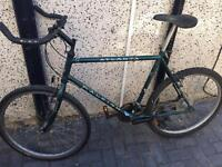 Raleigh 18 speed adults mountain bike works well £55