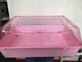 Baby pink guinea pig\ rabbit cage